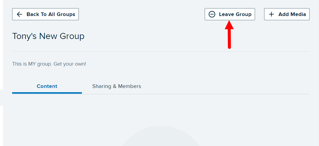 Group page with Leave Group button identified