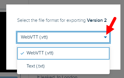 Export format popup box with options as described